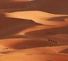 Caravan across the Sahara Desert by Haggiswonderdog