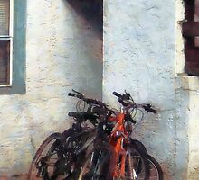 Bicycles in Yard by Susan Savad