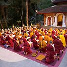 Evening chanting, Wat Palad, Chiang Mai, Thaiiand by John Spies
