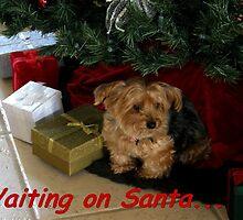 Waiting On Santa by Judith Hayes