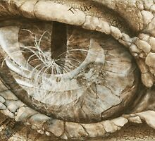 Dragon Eye Reflection of Creation by JackieGomez