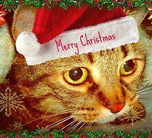 Dear Santa, this is my wish... © by Dawn M. Becker