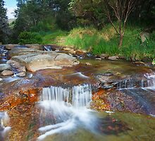 New Town Rivulet, Tasmania Panorama by Chris Cobern