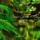"""Grey River Hush"" by Phil Thomson IPA"