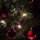 O Christmas tree... by Bernhard Matejka