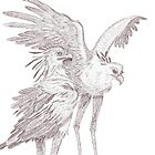Secretary Birds sketch by Maree Clarkson