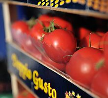 Vivid Tomatoes by Peppedam