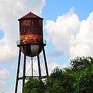 Water tower with Trees by joevoz