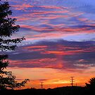 Fire in the Sky by Melissa Carlini