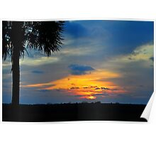 Sunset with a Palm Tree Poster