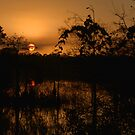 Winter Everglades Sunset by JKKimball