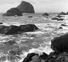 Sea Stacks by Harry Snowden