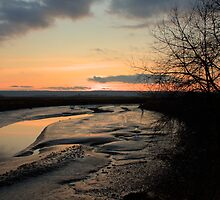 Padilla Bay Estuary at Dusk by Dale Lockwood