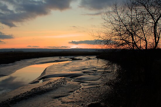 Padilla Bay Estuary at Dusk by Dale Lockwood