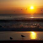 The Sun Rises at Asbury Park by Debra Fedchin
