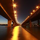 Under the Bridge - Iron Cove by Arfan Habib