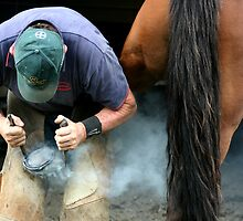 sam the farrier by rina  thompson