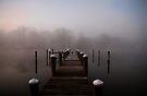 The Dock by Eileen McVey