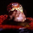 """Chocolate"" by debjyotinayak"
