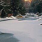 Winter Creek by Kathy Weaver