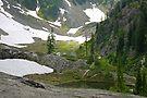 trail in heather meadows, wa, usa by dedmanshootn