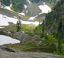 trail in heather meadows, wa, usa by dedmanshootn