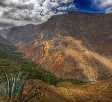 Colca Canyon, Peru by strangelight