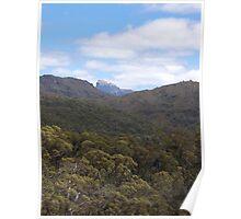 Frenchman's Cap - Tasmanian bush scene Poster