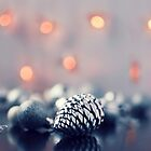 Christmas Decorations by mariakallin