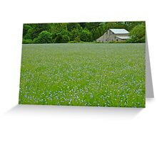Willamette Valley Landscape Greeting Card