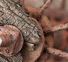 Rusted Wheel by Dan Lauf