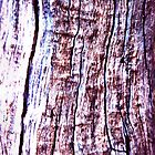 The purple tree by HeavenOnEarth