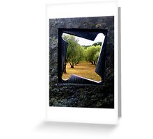 Window on the olive grove Greeting Card