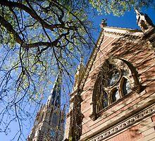 La Catedral De San Isidro by Freelancer