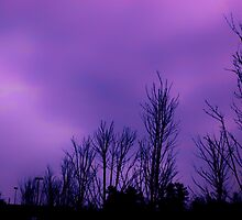 Dark purple sky on a cloudy day in Atlanta, Ga by Scott Mitchell