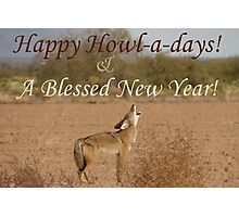 Coyote Howl-A-Day Card Photographic Print