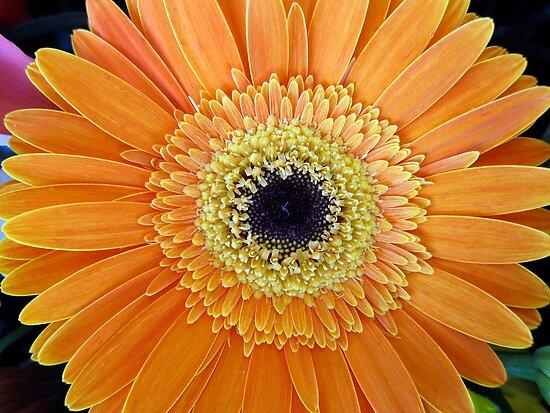 O Happy Day by Akrotiri