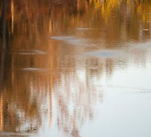 Autumn Reflections 1 by barnsis