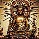 Zen by Robin Lee