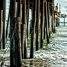 Closed Pier by Robin Lee