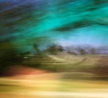 At speed, Florida Keys - 2011 by Joseph Rotindo