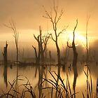 Cohuna Dawn by Jeff Symons