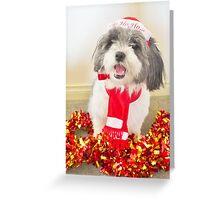 Christmas Pepper Greeting Card