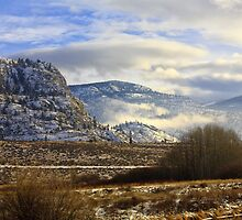 Southern British Columbia winter by Bruce Bidinoff