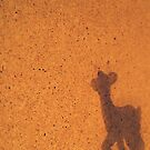 Unknown shadow. by queenxtc
