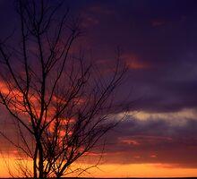 Winter Sunset on the Prairies 1 by oliverjm
