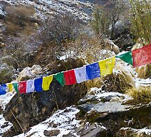 Prayer Flags, Annapurna Sanctuary by Mark Salkeld