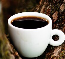 Trees Hold coffee well  by Gservo