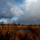 Pot of Gold by liesbeth