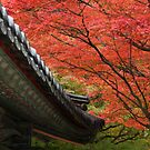 Autumn Leaves behind Roof Eaves, Bulguksa Temple by Jane McDougall